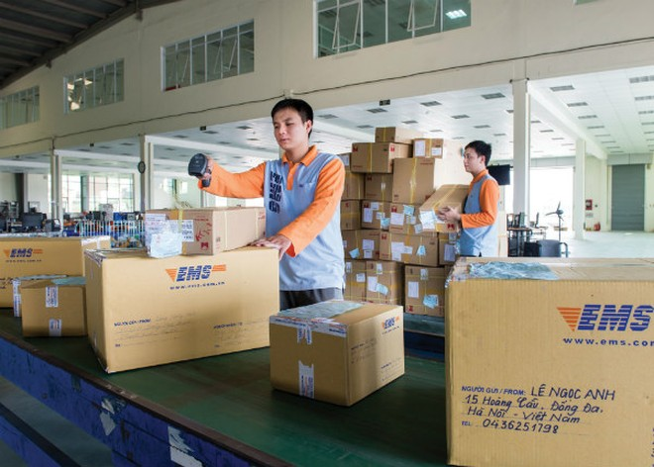 Khoảng 130.000 USD được chuyển về Việt Nam mỗi ngày trong dịp Tết Bính Thân