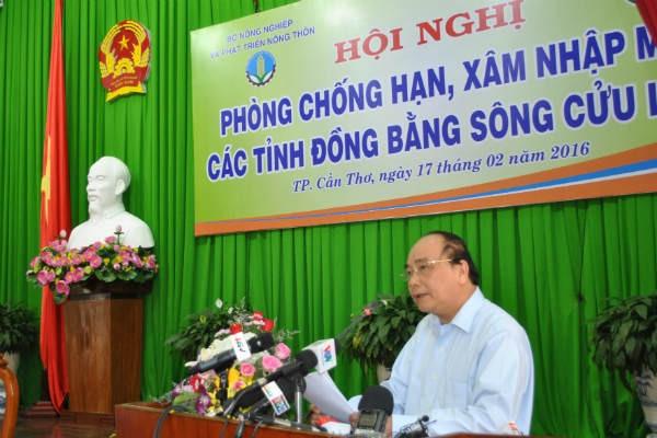 Nguy cơ mất trắng 340.000 héc-ta lúa tại Kiên Giang do hạn, mặn