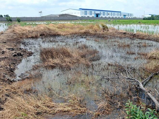 Để lọt doanh nghiệp FDI gây ô nhiễm môi trường