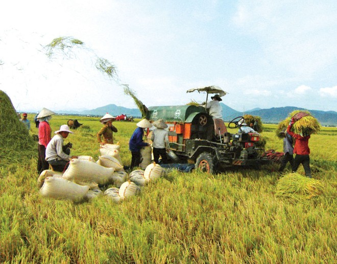 Chính sách đang cản trở thu hút FDI vào nông nghiệp