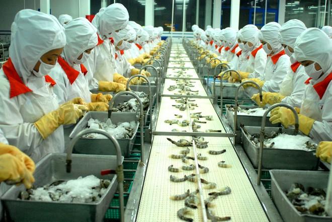 EU cảnh báo nhiều lô hàng thủy sản xuất khẩu của 2 doanh nghiệp Việt