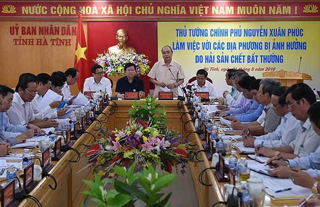 Báo cáo Thủ tướng việc cấp phép, giám sát hệ thống xả thải của Formosa