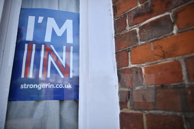 Brexit: Đa số cử tri tại nhiều khu vực ủng hộ ở lại EU