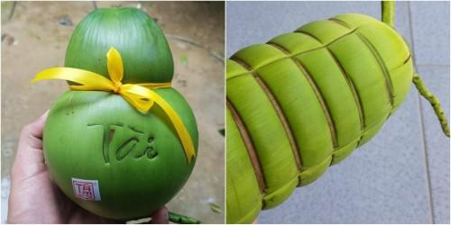 Dừa hồ lô, dừa bánh tét chưng Tết hơn nửa triệu đồng mỗi trái