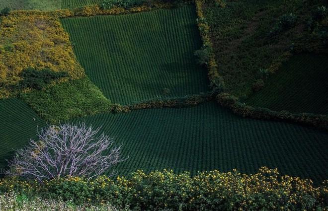 Chư Đăng Ya - 'viên ngọc bí ấn' của núi rừng Tây Nguyên