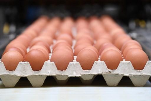 Scandal trứng nhiễm thuốc trừ sâu tấn công quốc gia thứ 18