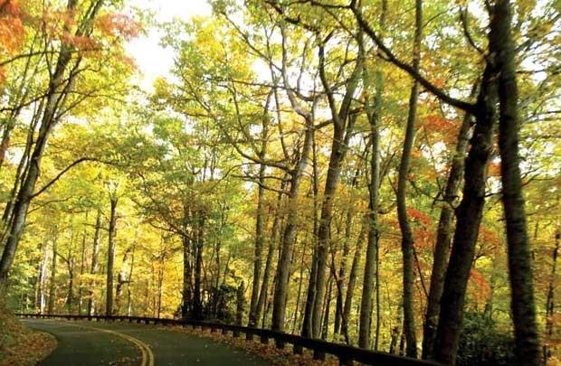 Cao nguyên Shenandoah ngày thu lộng lẫy